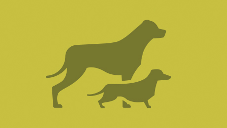 Two green dogs icon