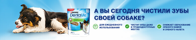 Лакомство для собак Purina DentaLife