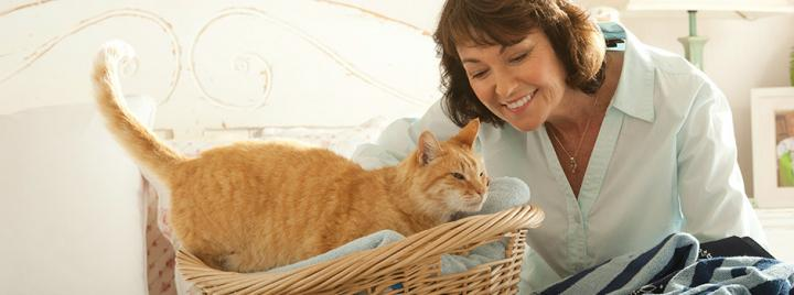 Ginger cat in basket next to owner